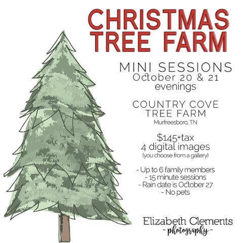 new to ecp this year christmas tree farm minis - Country Cove Christmas Tree Farm